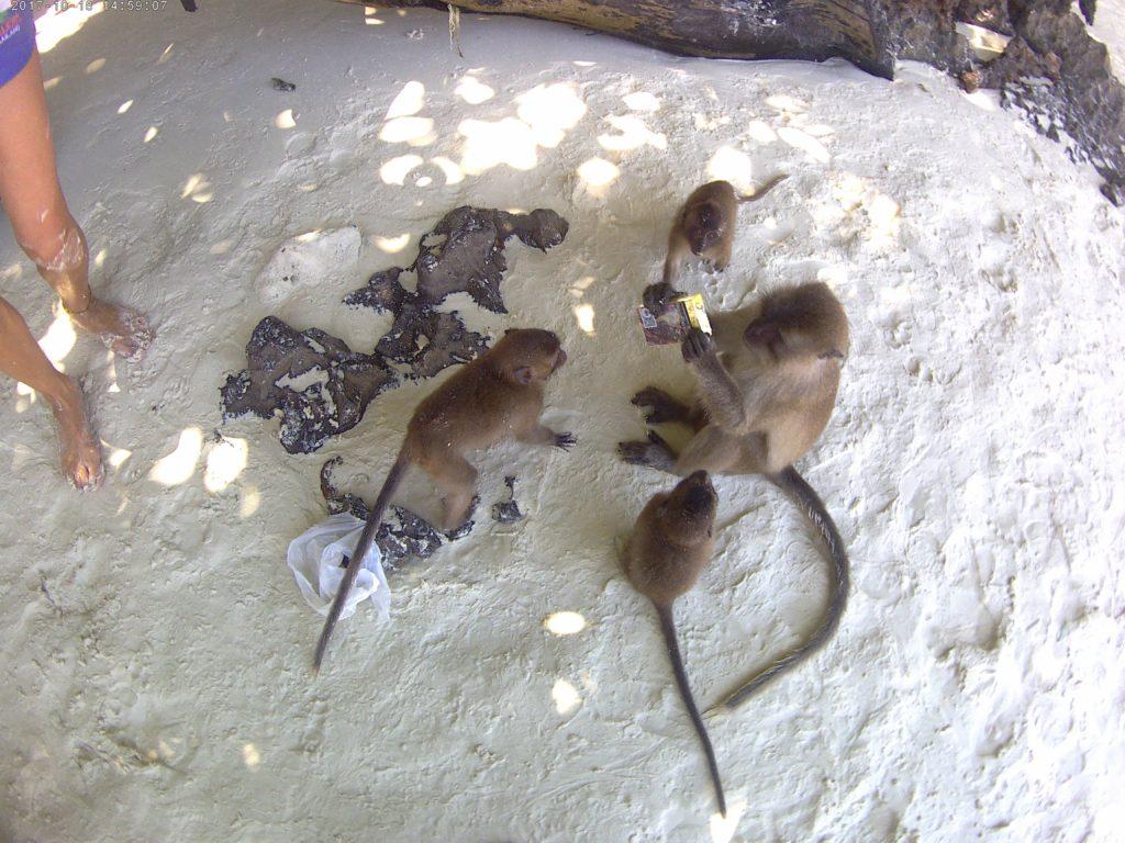 Μην διανοηθείς να κρατάς σακούλα στο Monkey Island
