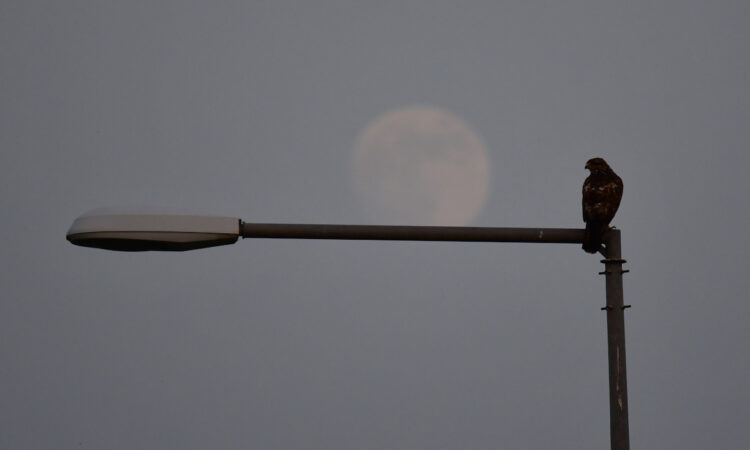 Υπερπανσέληνος 2021: Το φεγγάρι της φράουλας στο Ναύπλιο